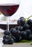 Rode wijn en druiven stock fotografie