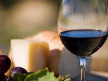 Rode wijn en kaas Stock Foto's