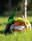 Rode wijn en mand vruchten Stock Foto