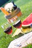 Rode wijn en picknick op het gras Royalty-vrije Stock Afbeeldingen
