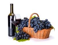 Rode wijn en rijpe blauwe druif in mand royalty-vrije stock afbeeldingen