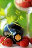 Rode wijn en vruchten. Stock Foto's