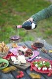 Rode wijn, kaas, en verschillende snacks bij een picknick in het park De ruimte van het exemplaar stock fotografie