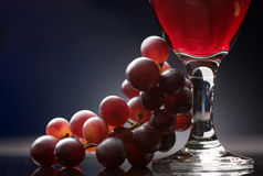 Rode wijn met druiven Stock Fotografie