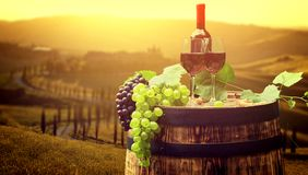 Rode wijn met vat op wijngaard in groen Toscanië, Italië stock afbeeldingen