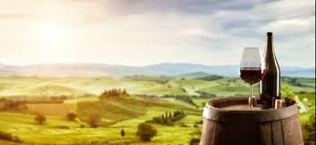 Rode wijn met vat op wijngaard in Italië stock foto's