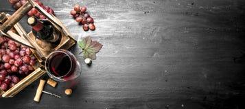 Rode wijn met verse druiven in een doos stock foto