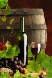 Rode wijn met wijnstok en vat Royalty-vrije Stock Foto's