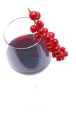 Rode wijn, redcurrant Royalty-vrije Stock Foto