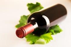 Rode wijnfles met de bladeren van de de herfstwijnstok Royalty-vrije Stock Afbeeldingen