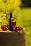 Rode wijnfles, wijnglas en druiven in wijngaard Stock Foto's