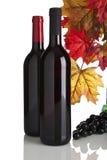 Rode wijnflessen, druiven en dalingsbladeren Stock Fotografie