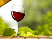 Rode wijnglas in de tuin Stock Foto