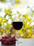 Rode wijnglas op houten oppervlakte met rode druiven Royalty-vrije Stock Afbeeldingen