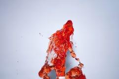 Rode wijnplons op witte achtergrond Stock Afbeeldingen