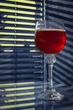 Rode wijnstok en banden Royalty-vrije Stock Foto's