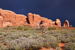 Rode Woestijn na het Onweer stock afbeeldingen