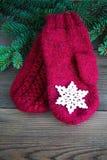 Rode wolvuisthandschoenen met met katoen gehaakte sneeuwvlok dichtbij de groene boom van het Kerstmisbont op de rustieke houten a stock afbeelding