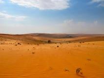 Rode zandwoestijn Royalty-vrije Stock Afbeelding