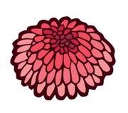 Rode zeeëgel gestileerde vectorillustratie Stock Afbeelding