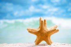 Rode zeester met oceaan, strand, hemel en zeegezicht Royalty-vrije Stock Afbeelding