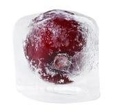 Rode zoete kers binnen van smeltend ijsblokje Stock Afbeeldingen