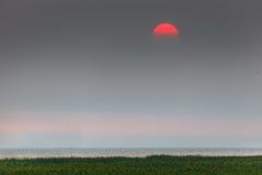 Rode zonsondergang in een nevel royalty-vrije stock afbeeldingen