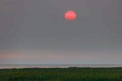 Rode zonsondergang in een nevel stock fotografie