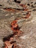 Rode Zwavelachtige Reproductie van de Hete Lente stock afbeeldingen