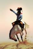 Rodeio Imagem de Stock