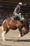 Rodeio: Bronc da sela Fotos de Stock
