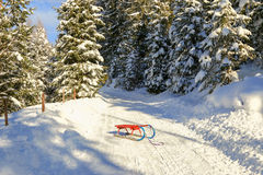 Rodel (Toboggan) in red and blue Royalty Free Stock Image