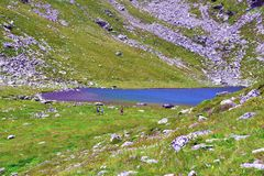 Rodella lake, sud tyrol italy. Rodella lake, Velturno, 2196 meters sud tyrol italy stock images