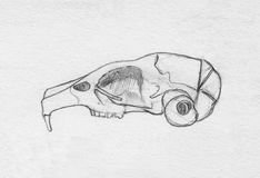 Rodent cranium. Sketch hand drawing image. Stock Image