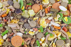 Rodent food mix of grains and seeds royalty free stock images