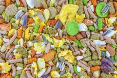 Rodent food mix of grains and seeds. Food for hamster Stock Photo