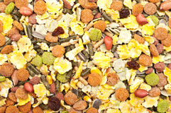 Rodent food mixture. Closeup shot of rodent food mixture Royalty Free Stock Image