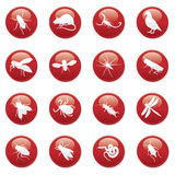 Rodent and pest buttons. Icons Royalty Free Stock Photo