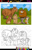 Rodents animals cartoon coloring book Stock Photography
