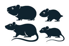 Rodents icons Stock Images