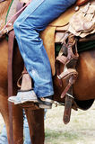 Rodeo. Horse and rider at a rodeo Stock Image