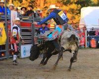 rodeo Stockfoto