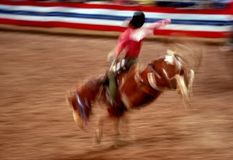 RODEO. Show in Phoenix, Arizona Royalty Free Stock Image
