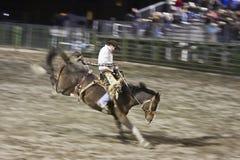 Rodeo royalty-vrije stock afbeelding