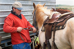 Rodeo. Cowboy fitting Western saddle to horse at Rodeo stock photo