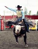 Rodeo Stock Photo