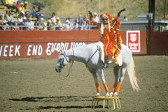 Rodeo antics on horseback Royalty Free Stock Photos