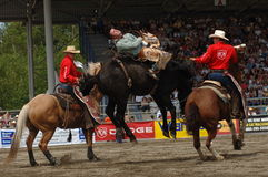 Rodeo: Bareback Riding Stock Images