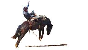 Rodeo blote ruiter die een wild hardnekkig verzetten tegend paard bedwingen vector illustratie