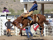 Rodeo Bucking Bronc Rider. Rodeos are very popular in the western states of the United States Stock Images